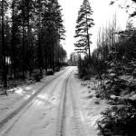 vinter001
