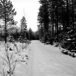 vinter003