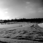 vinter006