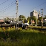 Norrgående tåg