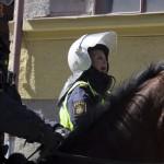 Polis till häst