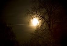 Månen tur och retur...