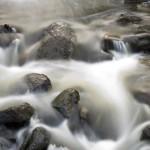 Vattnets väg